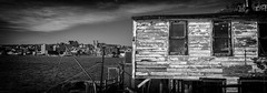 Battery Panoramic 3 (Zach Bonnell) Tags: stjohns newfoundlandandlabrador canada canoneos60d yongnuo35mmf2 panoramic blackandwhite explored explore