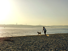 DSC07148_SV1 (errefotos) Tags: paisagem paisaje landscape paysage praia playa beach plage rio river riviere tejo barreiro portugal sonydscv1