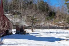 osv2019-17 (gtxjimmy) Tags: sonya7ii sony alpha a7ii mirrorless osv oldsturbridgevillage sturbridge massachusetts winter livinghistorymuseum newengland