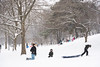 190220_Sledding-25 (Philadelphia Parks & Recreation) Tags: centercity kellydrive philadelphia snow fairmountpark fun sled sledding snowday snowfun snowsport weather winter2019