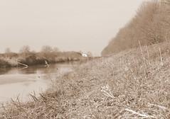 IMG_0052x (gzammarchi) Tags: italia paesaggio natura campagna ravenna sanromualdo canale fiume casa sepia