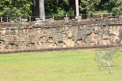 Angkor_terrazza degli elefanti_2014_12