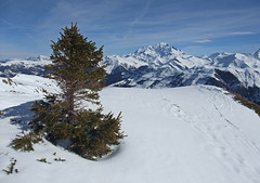 DSCF3717_modifié-1 (Laurent Lebois ©) Tags: laurentlebois france nature montagne mountain montana alpes alps alpen paysage landscape пейзаж paisaje savoie beaufortain pierramenta arèchesbeaufort