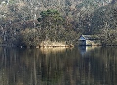 _2251112_DxO (Phil...H) Tags: water lake tree boathouse lakedistrict rydalwater