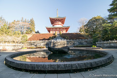 Narita-san Shinsho-ji Temple (takashi_matsumura) Tags: naritasan shinshoji temple narita chiba japan ngc nikon d5300 architecture 成田山 新勝寺 成田市 千葉県 afp dx nikkor 1020mm f4556g vr