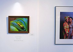 My First Gallery Showing (Eat With Your Eyez) Tags: first gallery showing local art museum akron ohio summit county summitartspace photograph display hanging juried competition march 2019 419 square miles panasonic fz1000