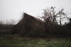 Deadbarn (SkylerBrown) Tags: abandoned architecture barn creepy dark farm fog gothic haunted landscape overcast rural tree