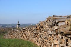 Du bois pour l'hiver (Croc'odile67) Tags: nikon d3300 sigma contemporary paysage landscape bois clocher ciel sky église arbres trees