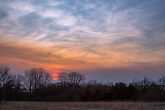 Tree Line Sunset (thefisch1) Tags: sunset sky tree winter bare pasture