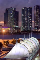 Miami Cruise Terminal (Mustang Joe) Tags: 2018 public cruise d750 caribbean newyears domain nikon