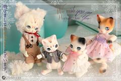 Bonne-Annee2019 (Nathy1317) Tags: doll bjd cocoriang mocka ruppe fairyland pukisha