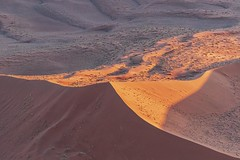 Sunny Side Up (gecko47) Tags: desert sand dunes sunlight shade ridges facets namibia namibnaukluftpark sesriem sossusvlei aerialphotography helicopter angles afternoon