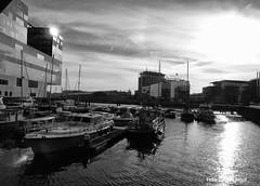 IJdok, 19-1-2019 (k.stoof) Tags: amsterdam ijdok ij deruijterkade centraal station cs havengebouw marina haven harbour schepen ships