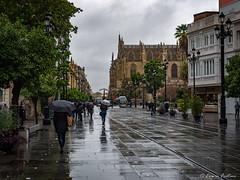 rainy day - Sevilla (Ennio Fratini) Tags: andalucia españa europa omdem1 olympus sevilla cathedral luminositymasks mirrorless people rainy street travelphotography