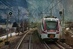 Trentino Trasporti (Giovanni Grasso 71) Tags: trentino trasporti nikon d610 giovanni grasso