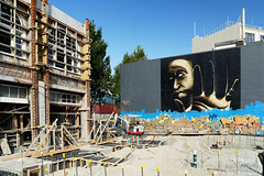 20190222-076-Christchurch street art (Roger T Wong) Tags: 2019 christchurch newzealand rogertwong sel24105g sony24105 sonya7iii sonyalpha7iii sonyfe24105mmf4goss sonyilce7m3 southisland art city streetart travel