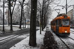 In inverno - In winter. (sinetempore) Tags: ininverno inwinter neve snow torino turin tram orangetram inverno winter freddo cold alberi trees corsomassimotorino arancione orange street 9 tram9