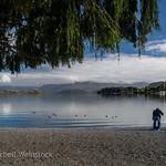 2018 New Zealand-1164 thumbnail