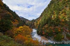 Kurobe Gorge (r0yc3) Tags: kurobe gorge toyama keyakidaira station autumn koyo japan
