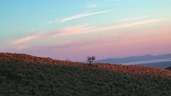 Cerro Pelado (Lud_fgt) Tags: cerro pelado costa rica 2019 family trip amazing atardecer sunset tree sky arbol montaña hill landscape sony 6300