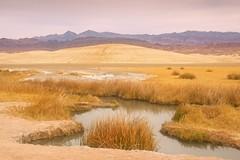 Tecopa Natural Hot Springs (jim.choate59) Tags: tecopacalifornia death valle deathvalley hotsprings desert jchoate on1pics oldspanishtrail lasvegas