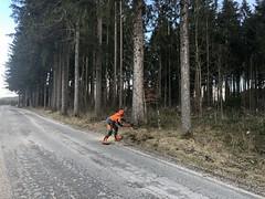 Einsatz Baum fällen