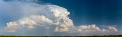 082618 - Updrafts & Anvil (Pano) 005 (NebraskaSC Severe Weather Photography Videography) Tags: flickr nebraskasc dalekaminski nebraskascpixelscom wwwfacebookcomnebraskasc stormscape cloudscape landscape nebraska weather nature awesomenature storm clouds cloudsday cloudsofstorms cloudwatching stormcloud daysky weatherphotography photography photographic weatherspotter chase chasers newx wx weatherphotos weatherphoto day sky magicsky darksky darkskies darkclouds stormyday stormchasing stormchasers stormchase skywarn skytheme skychasers stormpics southcentralnebraska orage tormenta light vivid watching dramatic outdoor cloud colour amazing beautiful updraft thunderhead stormviewlive svl svlwx svlmedia svlmediawx