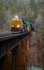 Nickel Plate at 23 (Wheelnrail) Tags: ns norfolk southern ge es44ac locomotive train trains 215 high priority intermodal emory river bridge tunnel 23 nemo tennessee cnotp rathole heritage unit 8100 nickel plate road