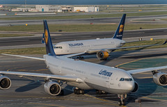 northern european lineup (pbo31) Tags: bayarea california nikon d810 color april 2019 boury pbo31 spring sanfranciscointernational sfo sanbruno sanmateocounty spotters airport aviation plane airline over travel lufthansa a340 airbus icelandairlines taxi boeing 767 arrival cockpit