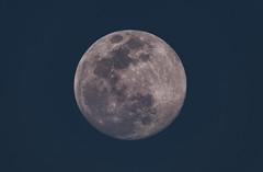 Moon (Harles99) Tags: moon astrophotography stars space moonastrophotography moonrise fuji fujixt3 xt3 astronomy