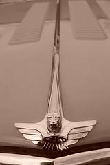Jaguar MkVII 1956, HRDC Track Day, Goodwood Motor Circuit (4) (f1jherbert) Tags: sonya68 sonyalpha68 alpha68 sony alpha 68 a68 sonyilca68 sony68 sonyilca ilca68 ilca sonyslt68 sonyslt slt68 slt sonyalpha68ilca sonyilcaa68 goodwoodwestsussex goodwoodmotorcircuit westsussex goodwoodwestsussexengland hrdctrackdaygoodwoodmotorcircuit historicalracingdriversclubtrackdaygoodwoodmotorcircuit historicalracingdriversclubgoodwood historicalracingdriversclub hrdctrackday hrdcgoodwood hrdcgoodwoodmotorcircuit hrdc historical racing drivers club goodwood motor circuit west sussex brown white sepia bw brownandwhite