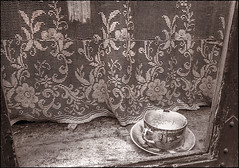 The Hatter's Cup | Aalborg, Denmark (Flemming J. Gade) Tags: oldhouse curtain cup dirt abandoned windowssill aalborg stilllife 1980s monochrome