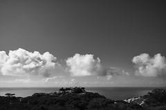 View of the view (mgschiavon) Tags: blackandwhite blackwhite bw california landscape sea nature