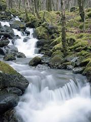Flow (Howie Mudge LRPS BPE1*) Tags: water cascade waterfall woods woodland forest travel adventure landscape nature ngc nationalgeographic gwynedd wales cymru uk fuji rangefinder fujiga645 mediumformat 645