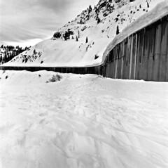 120BWB1P7Y2019015 (JWMcIntosh) Tags: 28 traintunnel hasselblad500c donnersummit fujiacros100