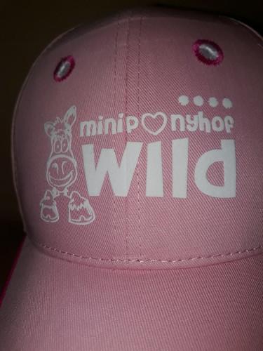Miniponyhof Wild