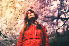 (suzcphotography) Tags: portrait flowers cherry blossom tree spring hippie hipster vinatge canon 5dmarkii 50mm