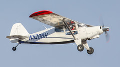 Bearhawk N528BH (ChrisK48) Tags: kdvt aircraft 2010 airplane bearhawk phoenixaz dvt phoenixdeervalleyairport n528bh