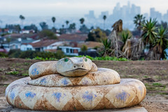 Rattlesnake Statue at Kenneth Hahn State Recreation Area (SCSQ4) Tags: california cityscape cloudy donutstreetmeet downtownlosangeles gloomy hikingtrail kennethhahnstaterecreationarea losangeles morning rattlesnake rattlesnakestatue snake statue twilight landscape