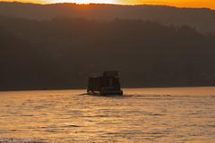 Schifferromatik im Sonnenaufgang-100 (nils.wuestefeld) Tags: ship schiff fluss romantik river rhine rhein sonnenaufgang sunrise