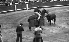 Picador (Arne Kuilman) Tags: lostandfound zimmermans photos photonotmine scan v600 epson holiday found gevonden bullfighting bullfighter arena past even spain bull picador