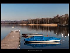 Varese Lake (iLaura_) Tags: lagodivarese bodio lake barche pontile riflessi alberi acqia water reflections trees boat landscape panorama lombardia italia varese