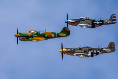 3 Ship (gilamonster8) Tags: aircraft wwii dmafb sigma prop warbirds wing warbird curtissp36hawk canon p36 flickr tucson northamericanp51mustang 5dmarkiv blue mustang flight plane p51 fly airforce sky arizona eos planes 2019heritageflighttraining airshow unitedstatesofamerica us