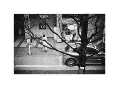 *Waiting for a Spring. (niko**) Tags: leica leicam2 noctilux50mmf10 e60 builtinhood ilford xp2400 135 35mm filmphotography yokohama
