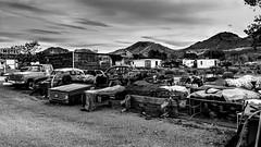 Beatty, Nevada, USA (Tasmanian58) Tags: vintage cars beatty nevada usa death valley california bw nb monochrome blackwhite noirblanc motel desert inn backyard sony a7ii