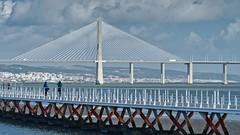Across (Rob Oo) Tags: lisbon portugal ccby40 lisboa lissabon pontevascodagama ro016b across bridge architecture ccby