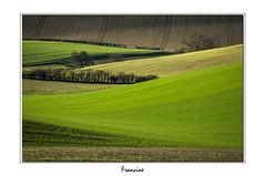 IMGP7560 (Francinen89) Tags: nature green vert champs fields landscape paysage printemps spring