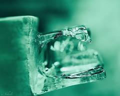 ... molten ice cube (u. Scheele) Tags: macro makro macromondays mm macromonday nahaufnahme green grün canon canoneos80d closeshot closeup ice eis eos eiskristall tamron digital eiswürfel hmm icecrystal cubes cold indoor bokeh cubedeglace vert schärfe unschärfe