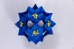 Columbine (modular origami) (Brian Ritchie) Tags: columbine meenakshimukerji modular origami