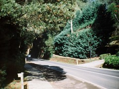 A blurry road photograph (Matthew Paul Argall) Tags: hanimex110kf fixedfocus 110 110film subminiaturefilm lomographyfilm 200isofilm road street mountdandenongtouristroad plasticlens crapcamera